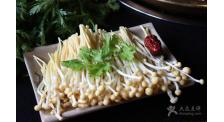 火锅金针菇供应
