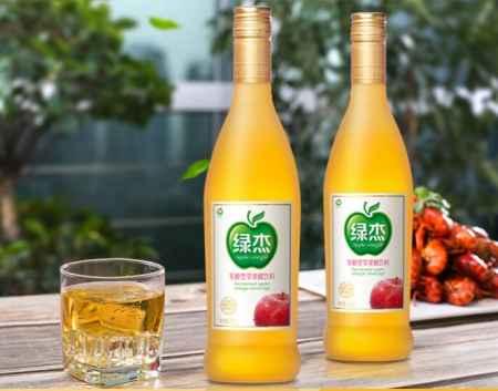 广东发酵型苹果汁饮料价格