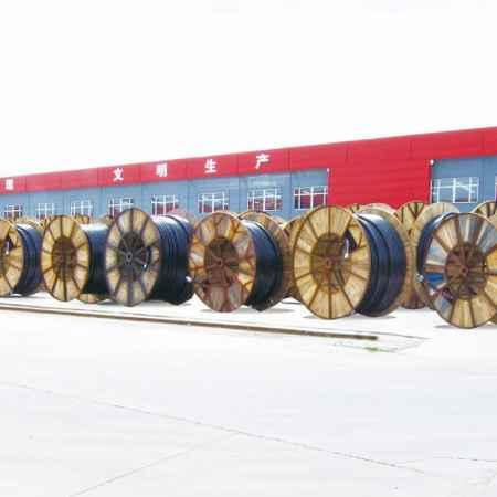 核电力电缆生产商
